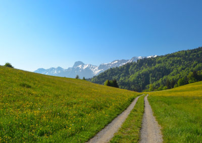 Grundbach-Wanderwege