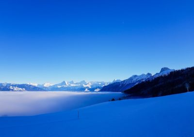 Winter_Nebelmeer